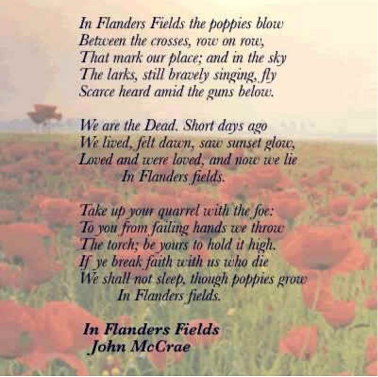 11 Best Poppy Day Images On Pinterest Lest We Forget Poppies And Remembrance Poppy