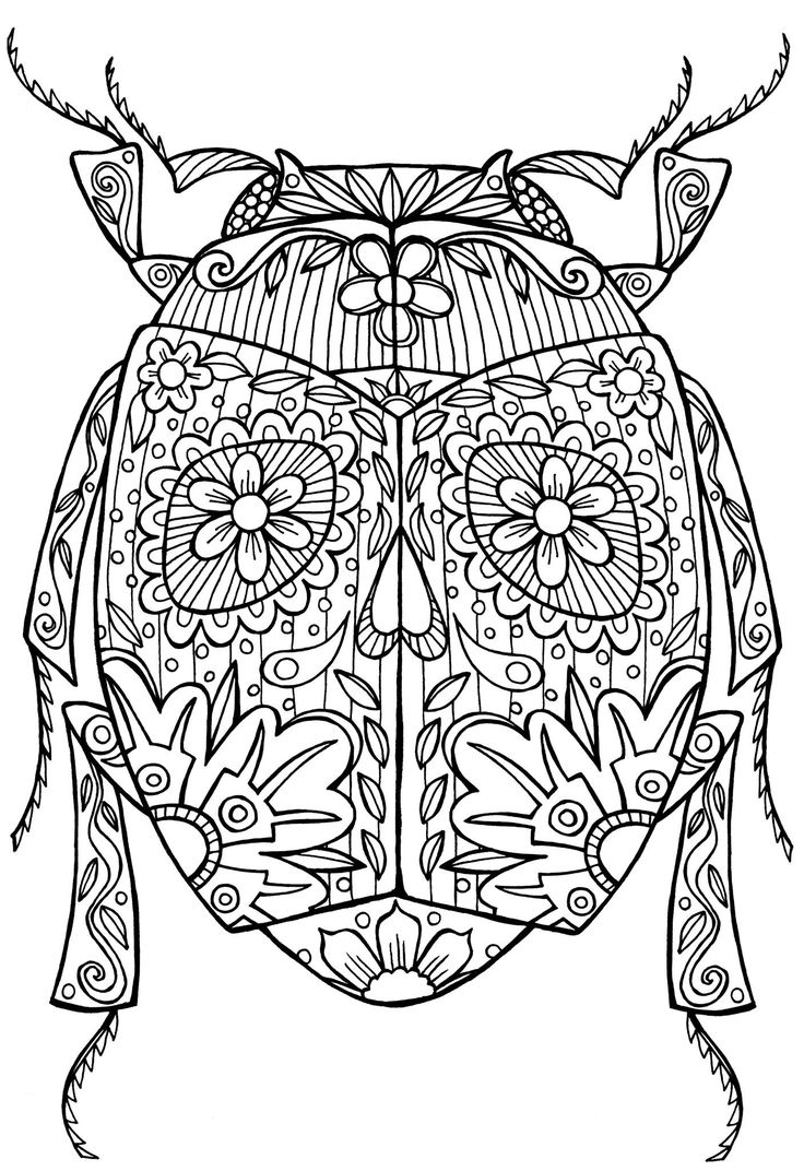 Beetle Bug Abstract Doodle Zentangle Coloring pages