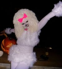 Halloween Costume: French Poodle #halloween #costume # ...
