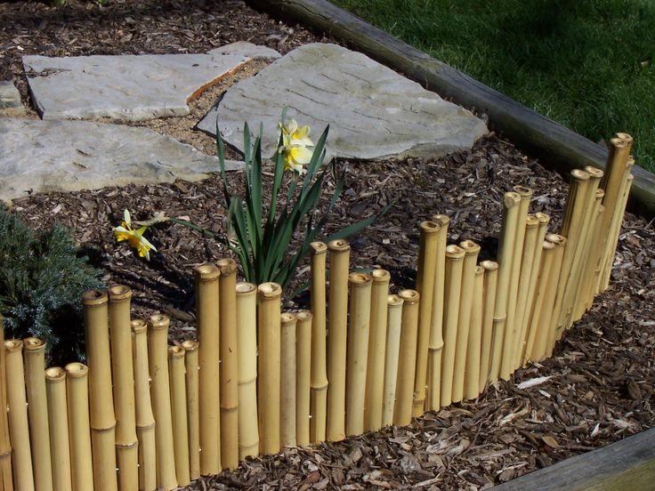 25 Best Ideas About Bamboo Garden Fences On Pinterest Bamboo