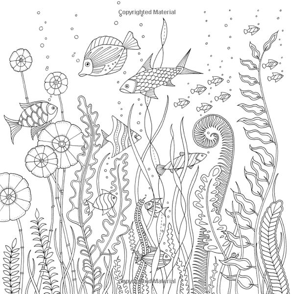 Lost Ocean: An Inky Adventure and Coloring Book: Johanna
