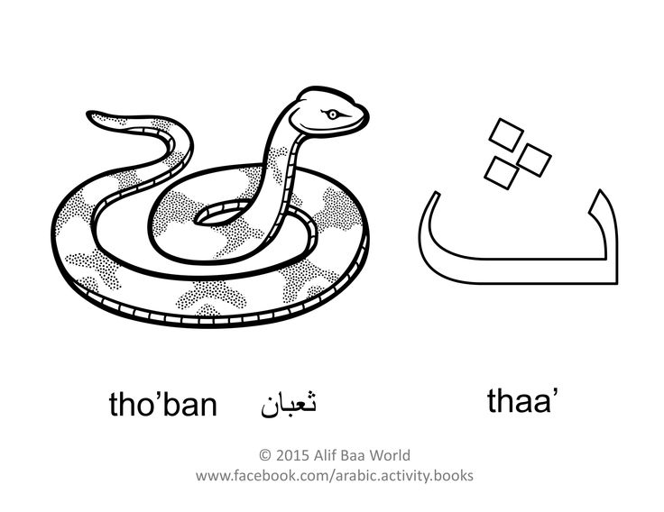 The fourth letter of the Arabic alphabet is: ث (Name: thaa