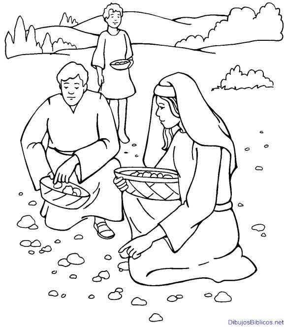 17 best images about Dibujos Bíblicos para colorear on