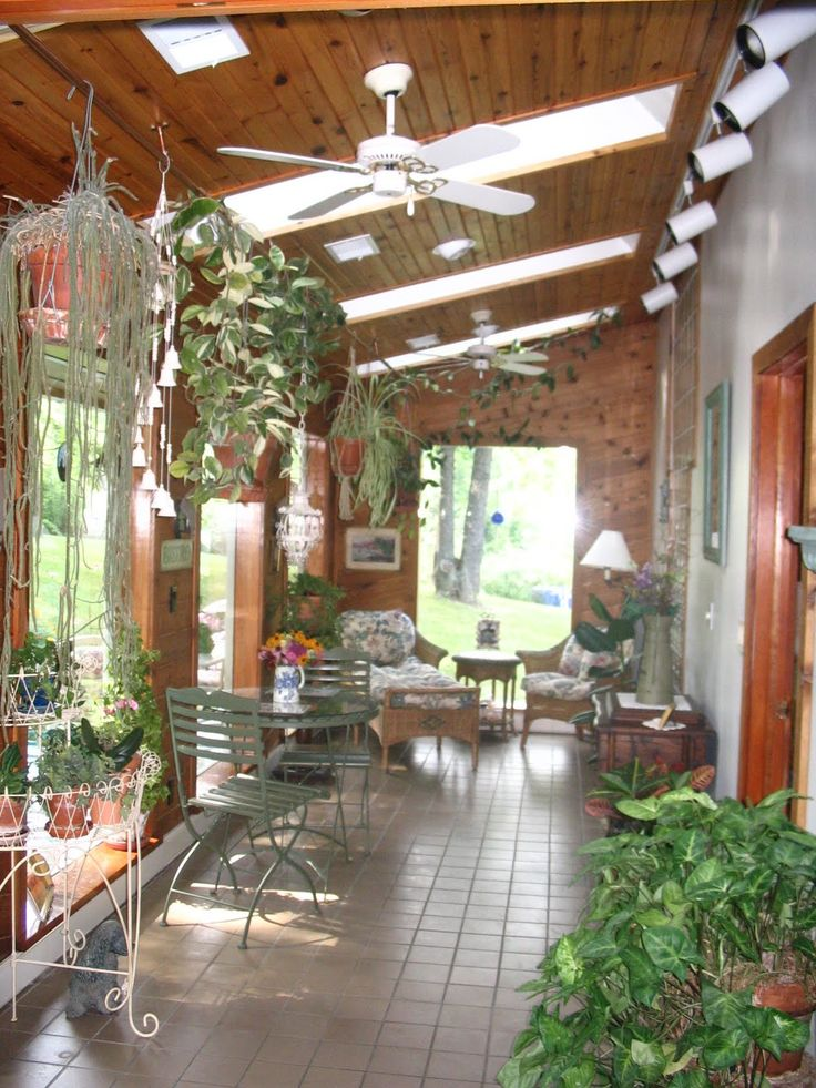 plants for sunrooms