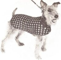 Top 25 ideas about Vintage Knitting Patterns for dogs on ...