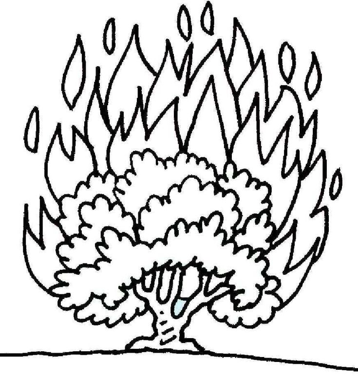 25+ best ideas about Burning Bush Craft on Pinterest