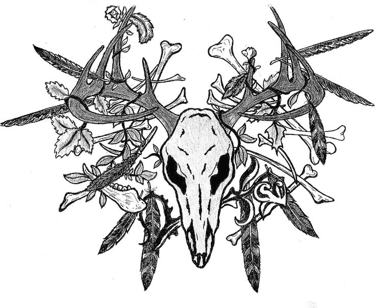 25+ best ideas about Easy Skull Drawings on Pinterest