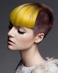 Best 20+ Dyed Bangs ideas on Pinterest | Crazy colour hair ...