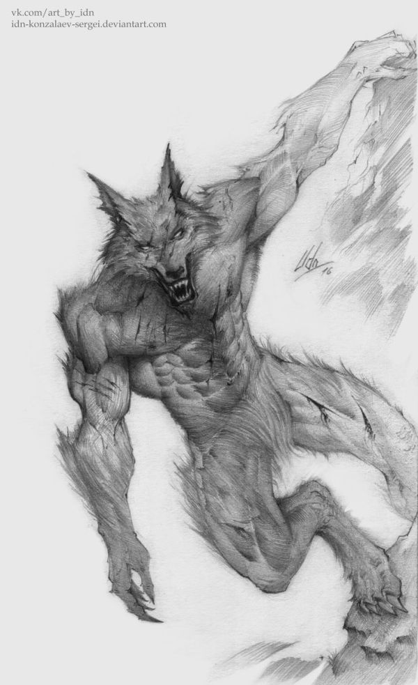 25 best ideas about Werewolf Drawings on Pinterest Wolf