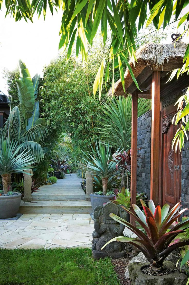 25 Best Ideas About Tropical Gardens On Pinterest Balinese
