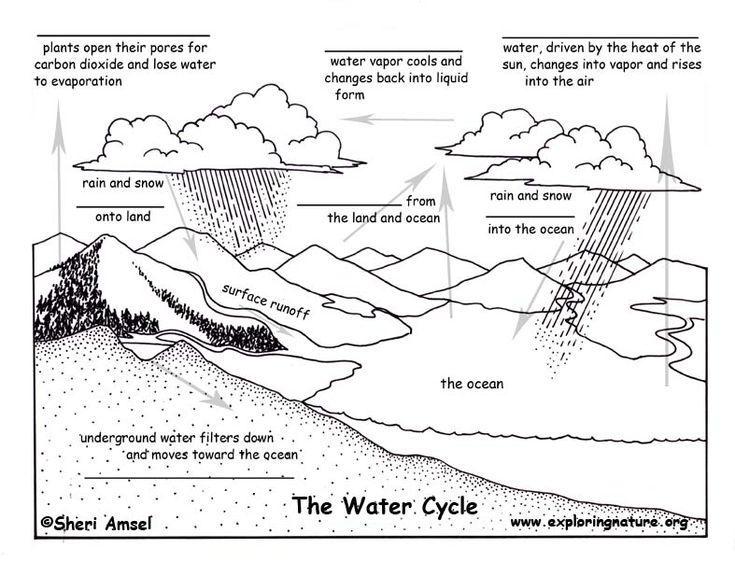 water cycle diagram quiz printable