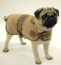 17 Best ideas about Designer Dog Clothes on Pinterest