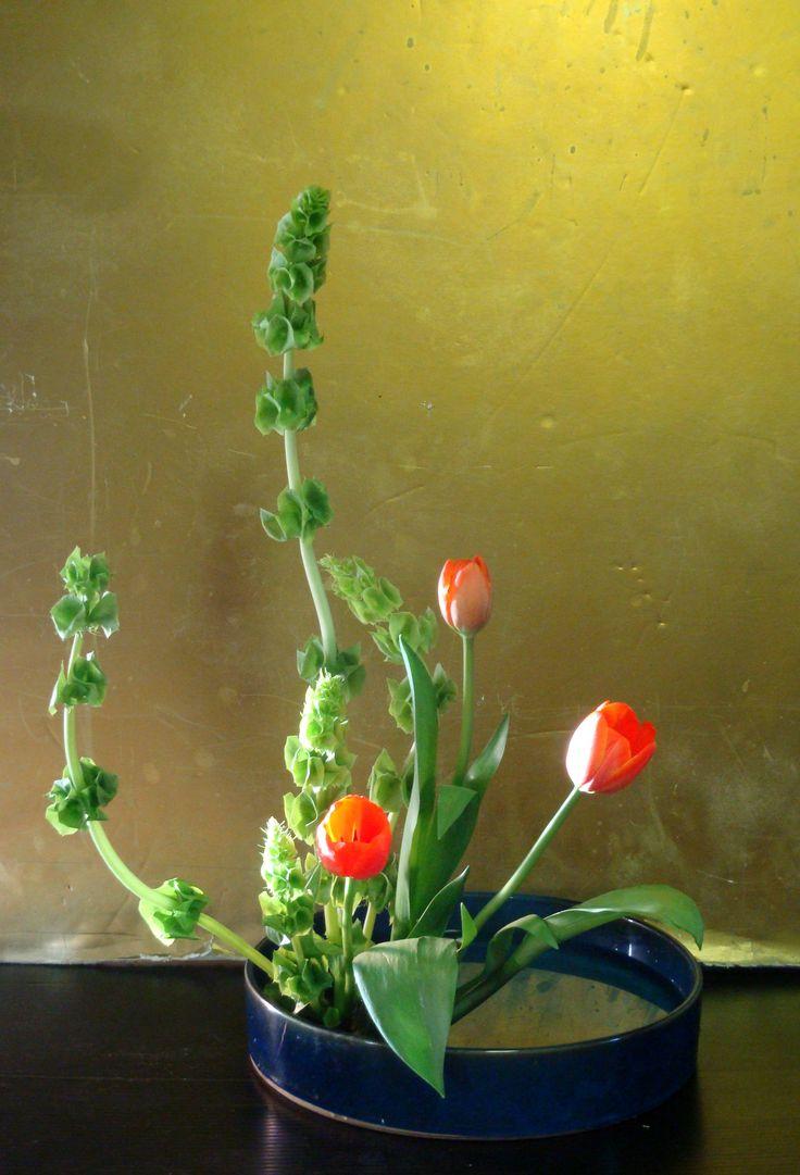 84 best images about Ikebana  Moribana Styles  Modern on
