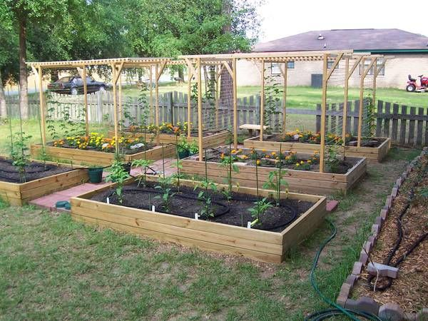 25 Best Ideas About Garden Bed Layout On Pinterest How To Plant