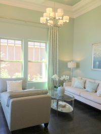 mint living room color | Wall colors | Pinterest