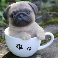 25+ best ideas about Teacup pug on Pinterest