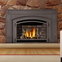 1000+ ideas about Gas Fireplace Insert Prices on Pinterest ...