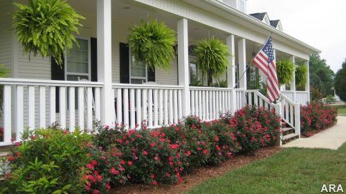 front porch landscape yard