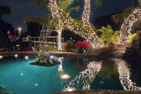 51 best images about Pool Party Decorations on Pinterest ...