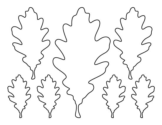 Oak leaf pattern. Use the printable outline for crafts