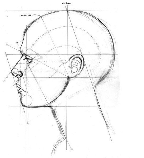 385 best images about Figure Drawing / Head & Shoulders on