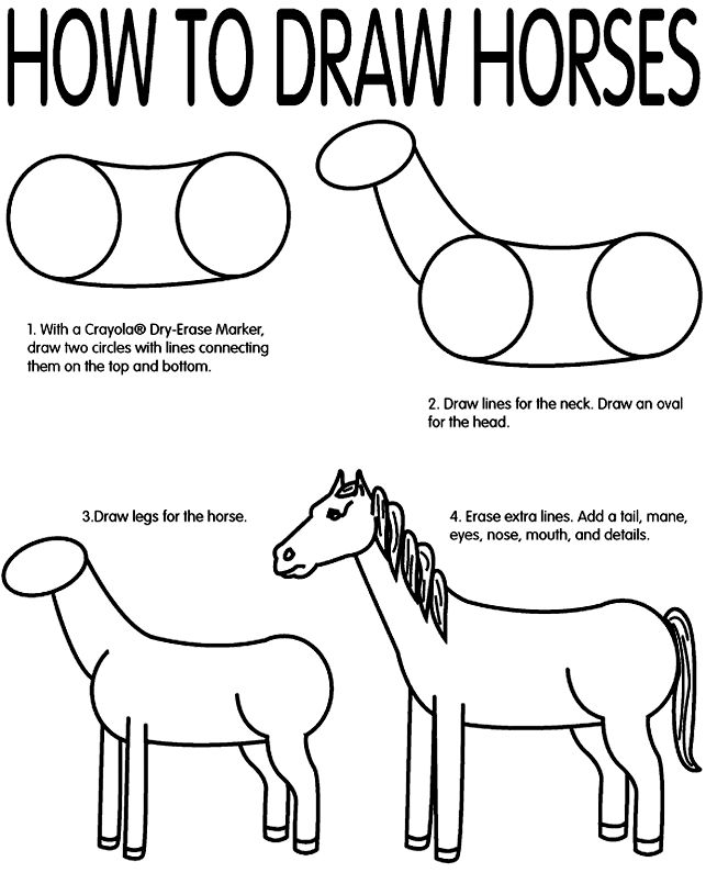 103 best images about How To Draw Farm Animals on Pinterest