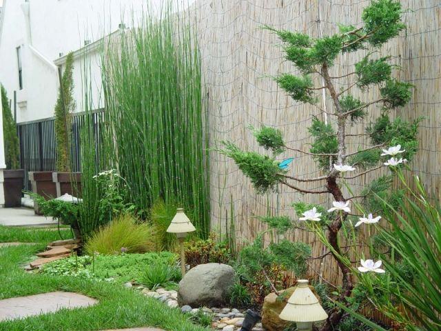 Best 20 Sichtschutz Garten Bambus Ideas On Pinterest Bambus Als