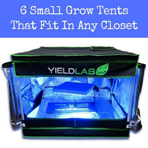 1000+ ideas about Grow Tent on Pinterest