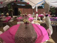 25+ Best Ideas about Cheetah Baby Showers on Pinterest ...