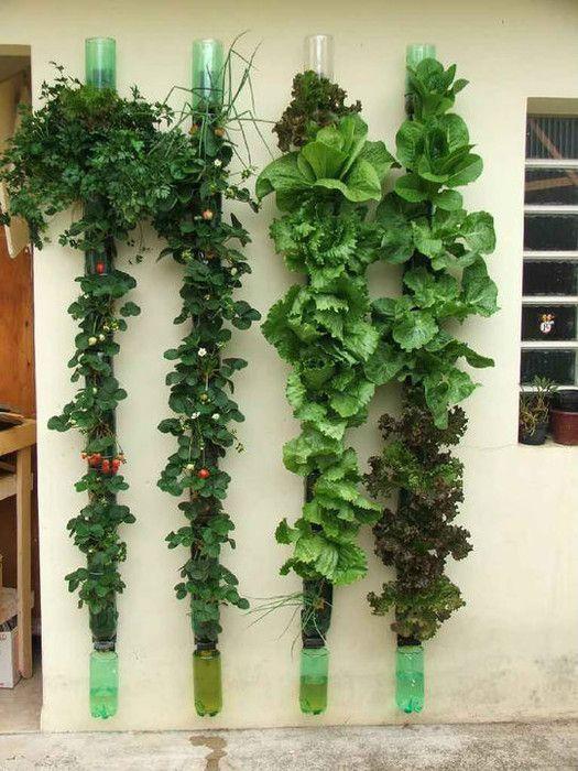 25 Best Ideas About Diy Vertical Garden On Pinterest Vertical