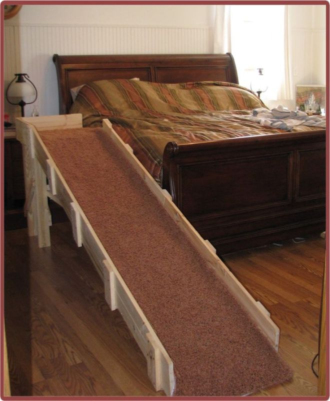 Build your own dog ramp best present to keep those backs
