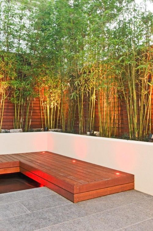 25 Best Ideas About Bamboo Fencing On Pinterest Tuin Terrace