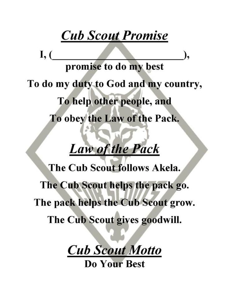 1000+ images about cub scout ideas on Pinterest