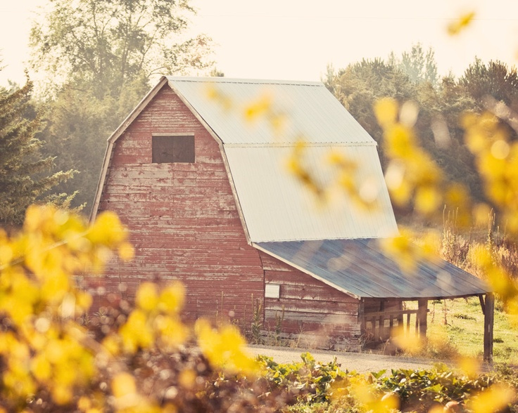 227 Best Images About Barn Homes On Pinterest Old Barns Yankee