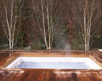 Houzz Hot Tub And Fire Pits Design, Pictures, Remodel ...
