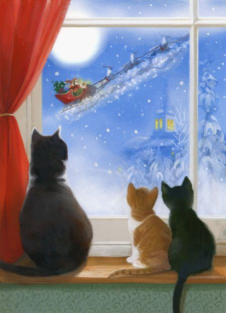 1000 Ideas About Christmas Cats On Pinterest Christmas