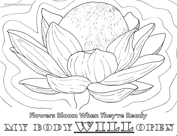 48 best images about Birth Pregnancy Coloring Pages on