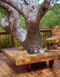 1000+ images about Tree Seats & Benches on Pinterest ...
