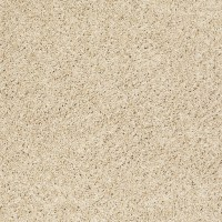 17 Best images about Shaw Carpet - Neutral Colors on ...