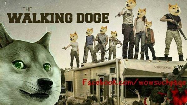 Walking Doge Doge Meme Dog Memes Pinterest The o