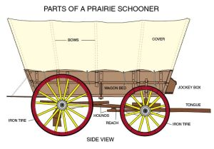 conestoga wagon plans | Labeled diagram great for notebook