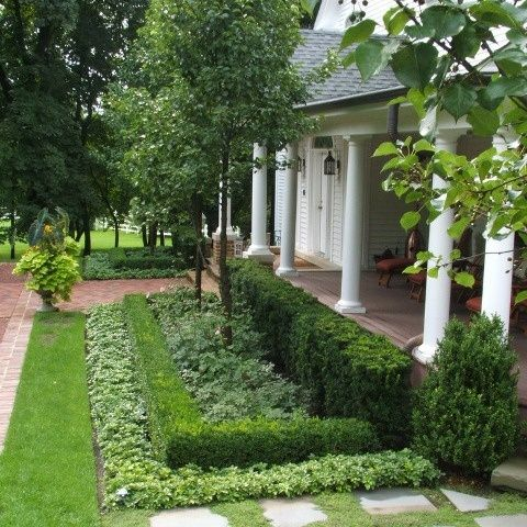 25 Best Ideas About Hedges Landscaping On Pinterest Hedges