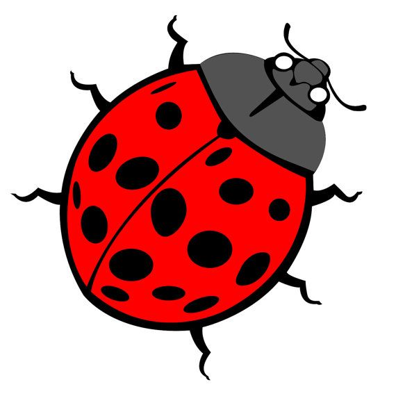 ladybug clipart insect clip art