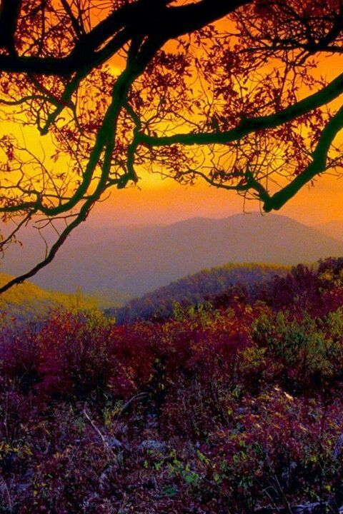Fall Foliage Wallpaper For Iphone 17 Best Images About Blue Ridge Mountains Virginia On