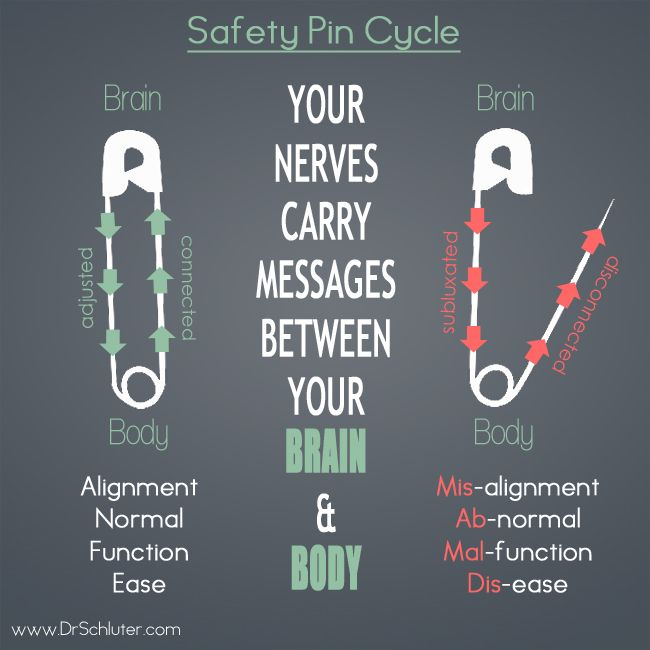 back support for office chairs australia hair salon sink and chair 48 best images about chiropractic - info graphics on pinterest | pathways, physical therapy ...