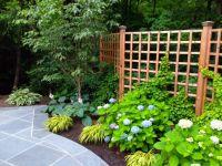 Best 20+ Lattice Garden ideas on Pinterest | Trellis ideas ...