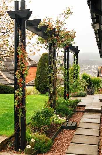25 Best Trellis Ideas On Pinterest Trellis Flower Vines And Patio