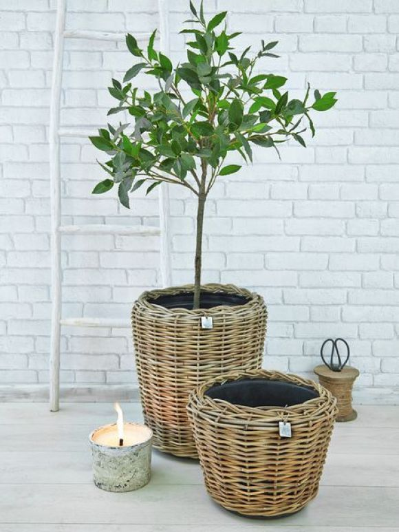 Rattan Planter- fabulous for outside or use indoors for that wonderfully warm, natural touch: