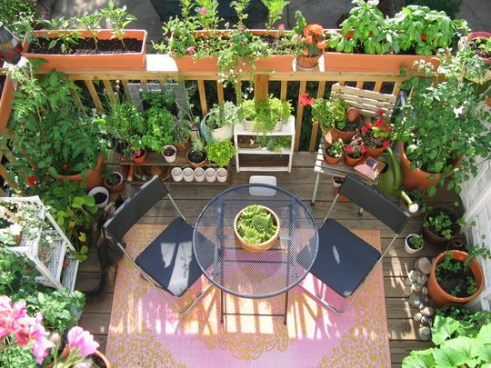 Growing Smaller Start Your Apartment Balcony Garden Steven
