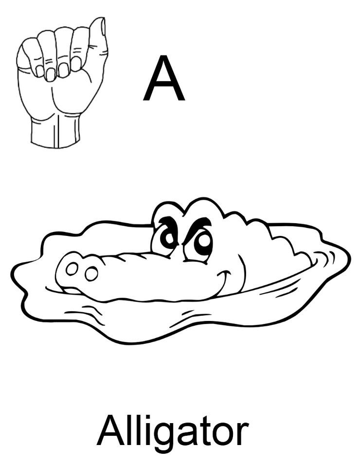 1000+ images about Teach Sign Language to Kids on